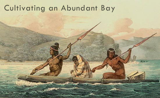 Cultivating an Abundant Bay