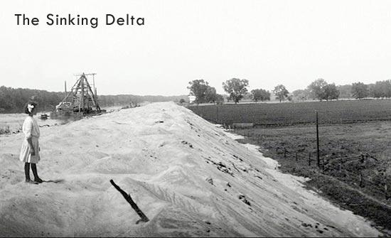 The Sinking Delta