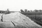 The-Sinking-Delta